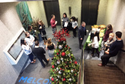Christmas tree and refreshments at the Melton Building Christmas event for tenants
